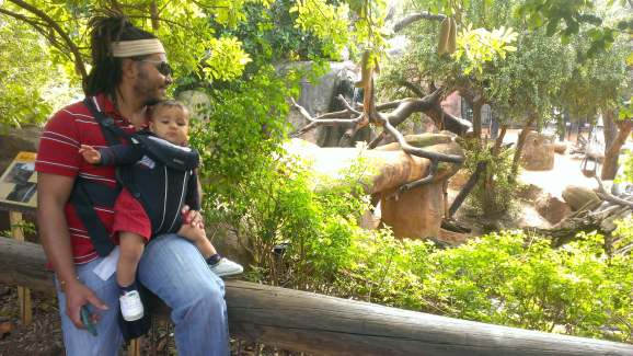 things to do in perth for families