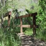 Bridge on a trail12