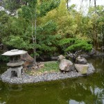 Pond with Japanese garden12