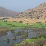 Green valley at Three Rivers12