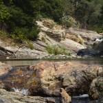 Pond behind a rock12