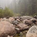 Rocky creek bed12