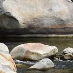 Waterlevel mark on rock12