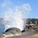 Wave splashtower12