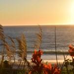 Soft Sunset12