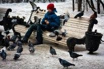 Boy feeding pigeons at park in St. Petersburg.