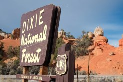Passing through the Dixie National Forest
