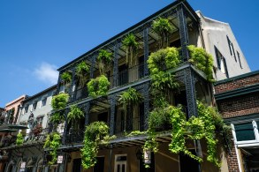 Plants decorate ornate railings in the French Quarter in New Orleans
