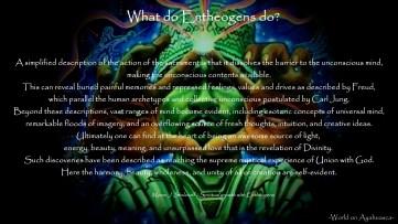 -World on Ayahuasca- What do entheogens do