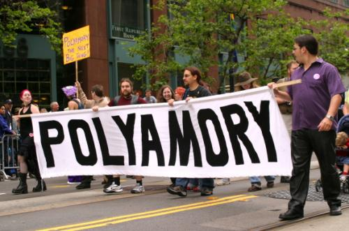 PolyamoryParadeBanner