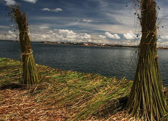 Tortora Reeds Islands