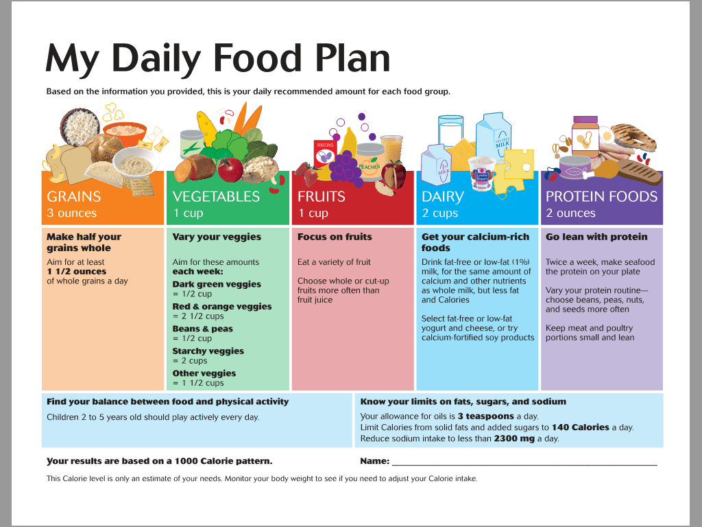 Printables Of My Daily Food Plan Worksheet Example