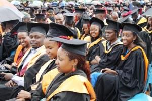 public-health-scholarships-new-zealand