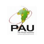 pan-african-university-scholarships