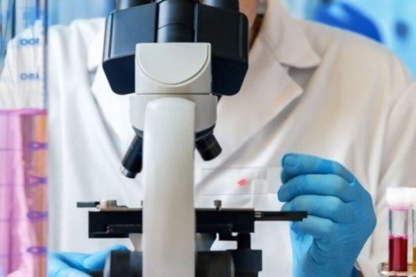 bio-med-engineering-school