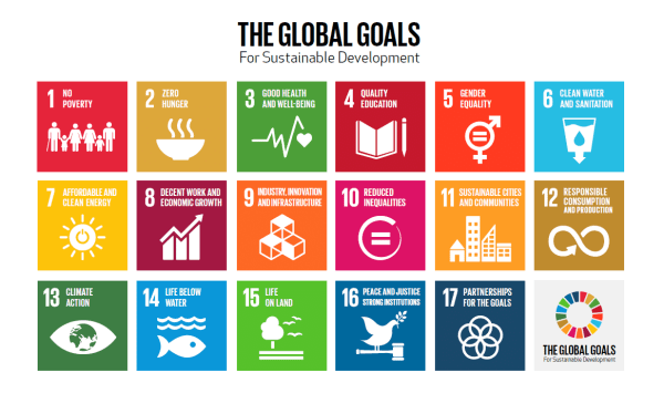United Nations Sustainable Development Goals (SDG) program for young leaders initiative 2020