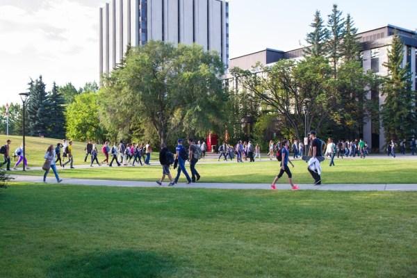 best universities in calgary