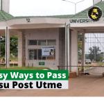 7 maneras fáciles de aprobar el examen Imsu Post Utme