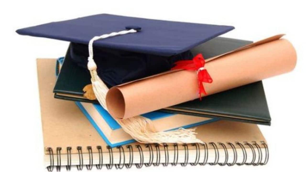 Abbott and Fenner Scholarship 2022 [Updated]