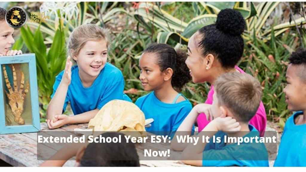 Extended School Year ESY:  Why It Is Important Now!