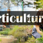 Horticulture and related story behind this science art