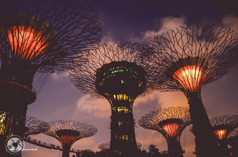 Singapur Tag 1-8