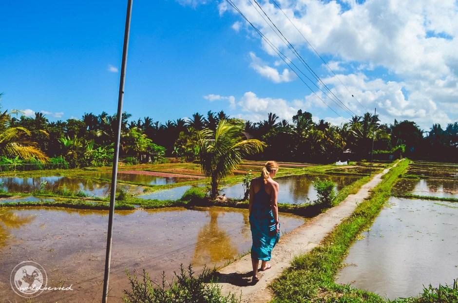 Bali Ubud 2-40