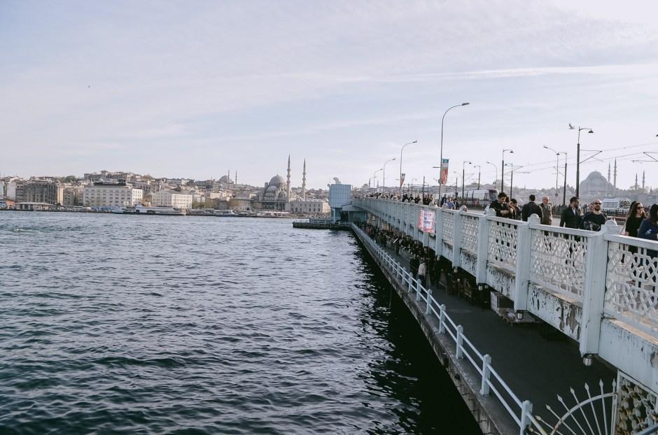 Istanbul T1-31