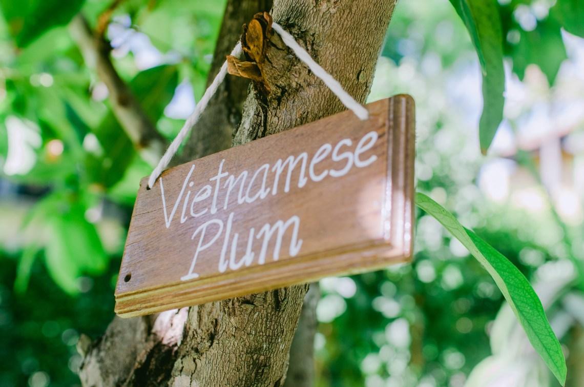 anantara-mui-ne-vietnam-worldsessed-com-56