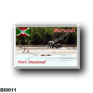 BI0011 Africa - Burundi - Parc national de la Rusizi