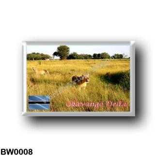 BW0008 Africa - Botswana - Okavango Delta - Lions