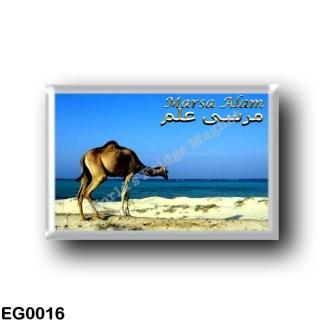 EG0016 Africa - Egypt - Marsa Alam