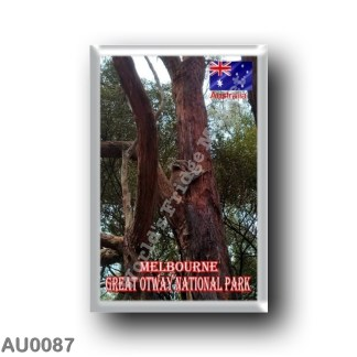 AU0087 Oceania - Australia - Melbourne - Great Otway National Park