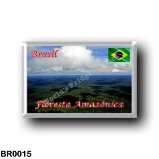 BR0015 America - Brazil - Floresta Amazônica