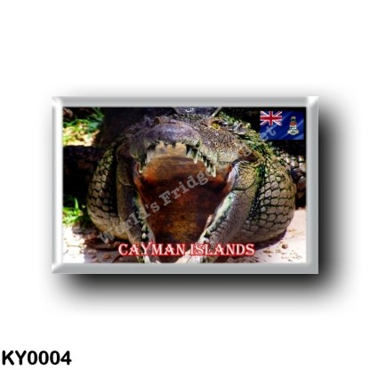 KY0004 America - Cayman Islands - Crocodile at Cayman