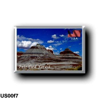 US00f7 America - United States - Arizona - Petrified Forest National Park