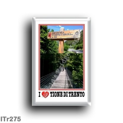 ITr275 Europe - Italy - Trentino Alto Adige - Tione di Trento - Bridge that dances