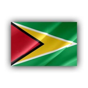 Guyana - flag