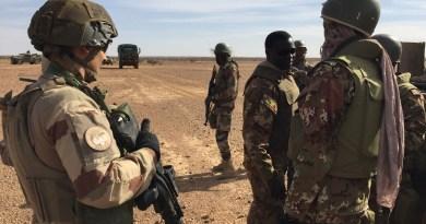 15 Militants Killed In Anti-jihadist Operation In Mali