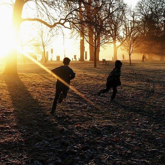 Frost park London