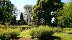 Schöne viele grüne Parks