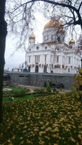 The view of the cathedral with autumn leaves