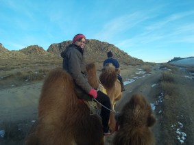 On the back of a real camel with two humps (not dromedary like in Egypt)
