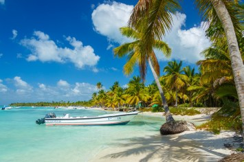 boat tied to a tree on a sunny beach with palm trees and light blue water