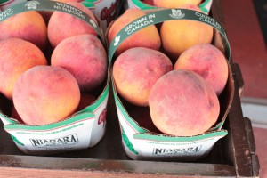 peaches in a baskets that say grown in Canada
