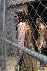 walking dead male and female characters behind a chain link fence