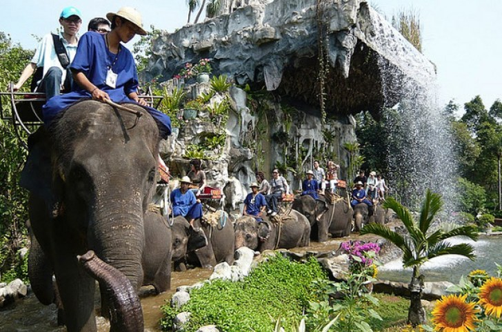 Samphran-Elephant-Ground-Zoo