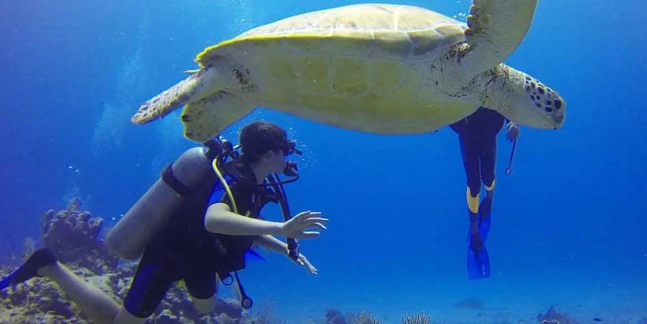 Scuba diving and adventure activities