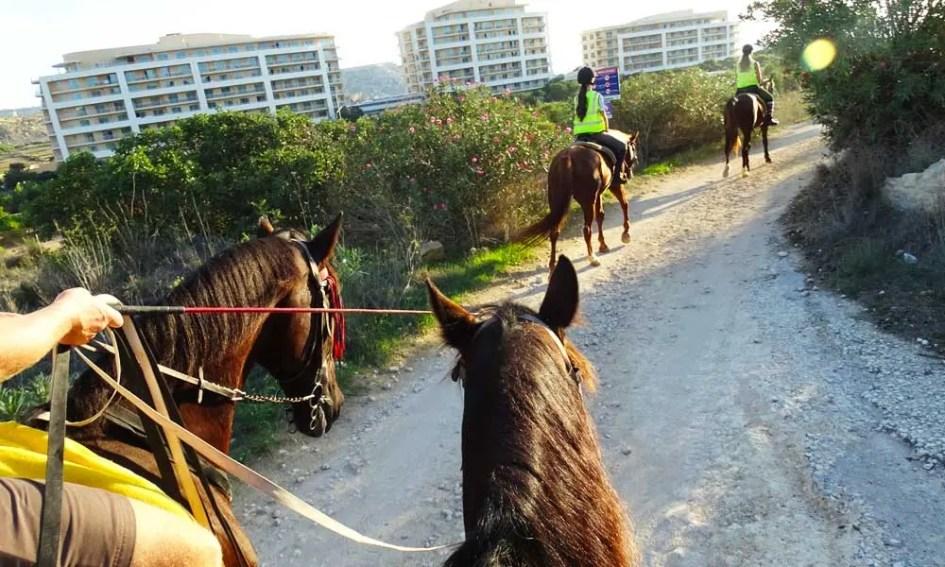 Malta Horse Riding tour