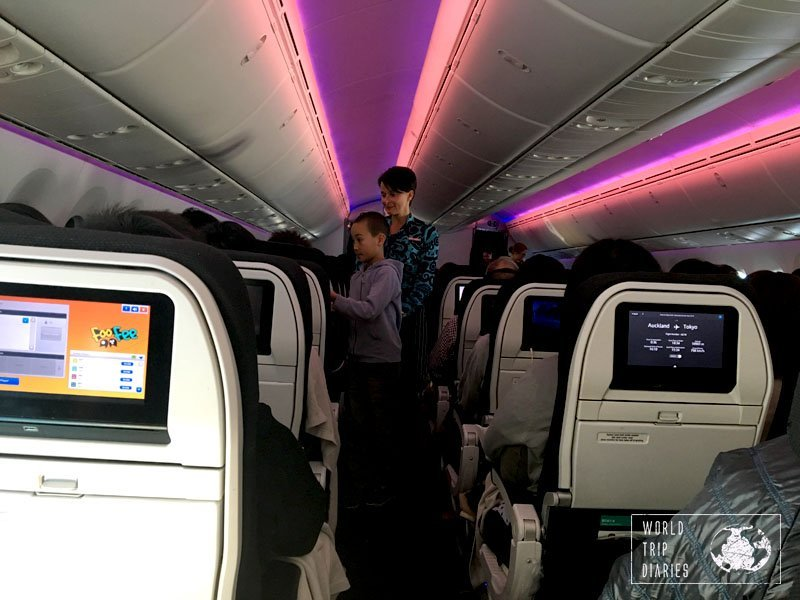 flight attendant josé